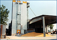 Grain drying system 700 tons