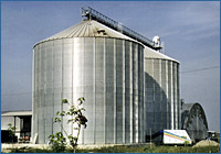 A Tecnograin example of grain storage bins