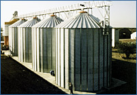 Grain storage silos installations: Agricom, Canino (VT) :: grain drying 400 tons, grain storage 15.200 tons